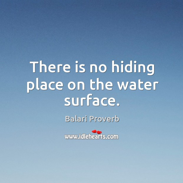 There is no hiding place on the water surface. Balari Proverbs Image