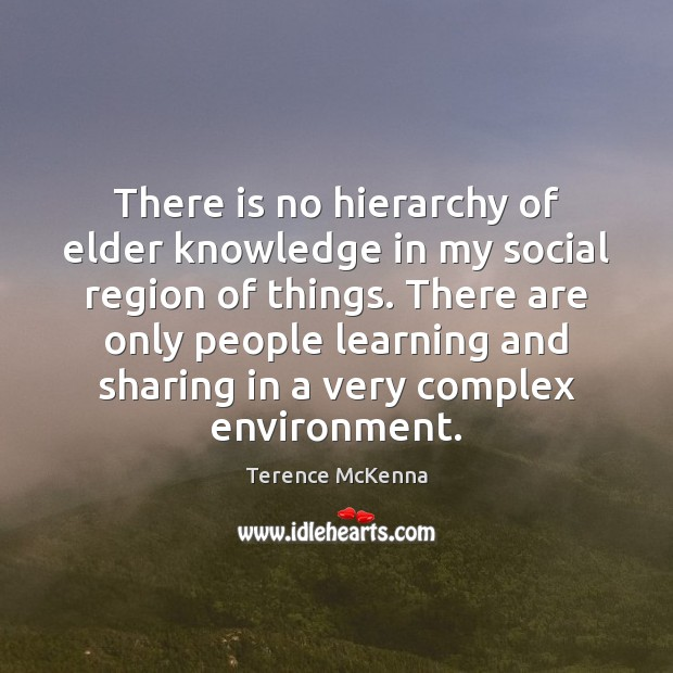 There is no hierarchy of elder knowledge in my social region of Terence McKenna Picture Quote