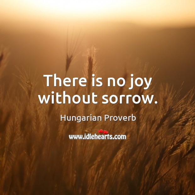 Image, There is no joy without sorrow.
