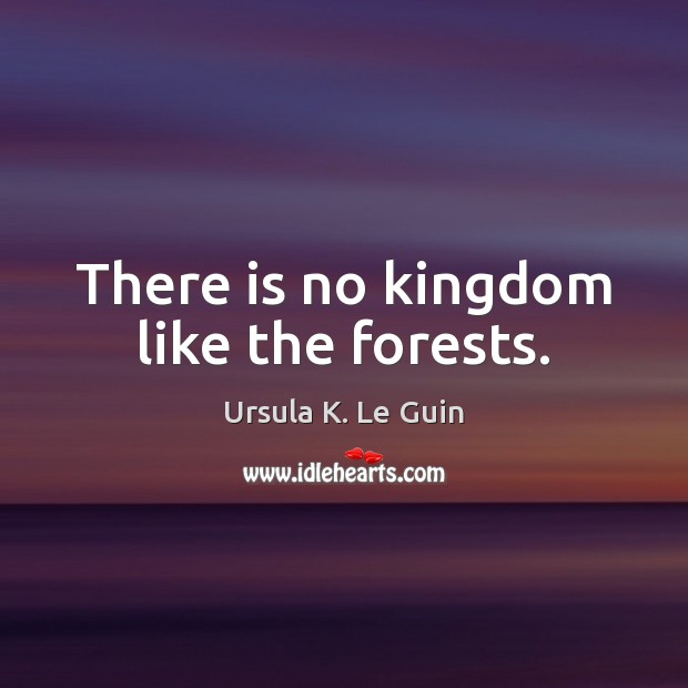 There is no kingdom like the forests. Image