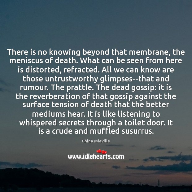 Image, There is no knowing beyond that membrane, the meniscus of death. What