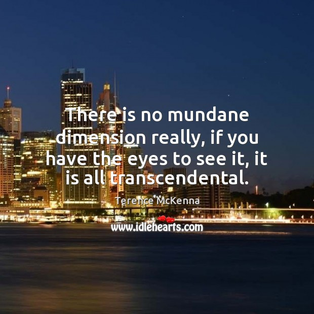 There is no mundane dimension really, if you have the eyes to Image