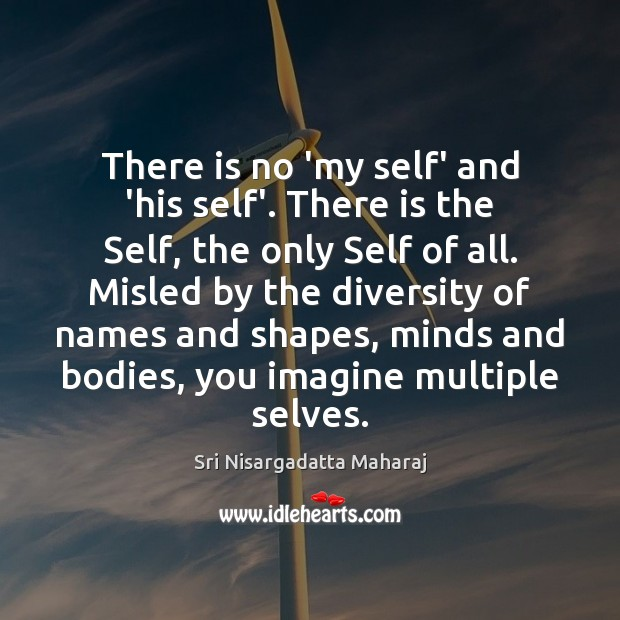 There is no 'my self' and 'his self'. There is the Self, Sri Nisargadatta Maharaj Picture Quote