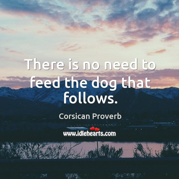 Image, There is no need to feed the dog that follows.