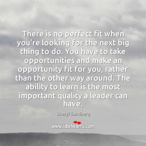 There is no perfect fit when you're looking for the next big Sheryl Sandberg Picture Quote