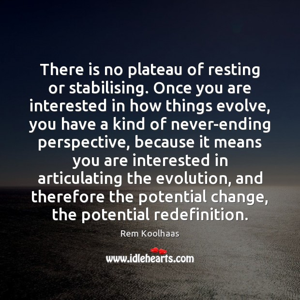There is no plateau of resting or stabilising. Once you are interested Rem Koolhaas Picture Quote