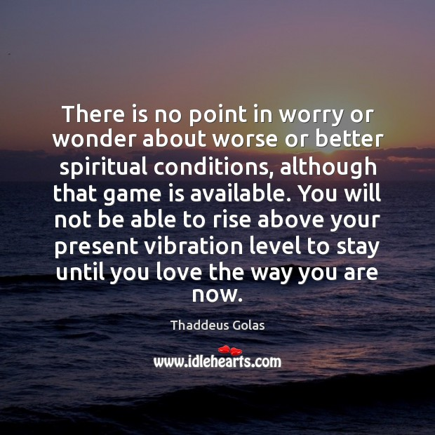 There is no point in worry or wonder about worse or better Thaddeus Golas Picture Quote