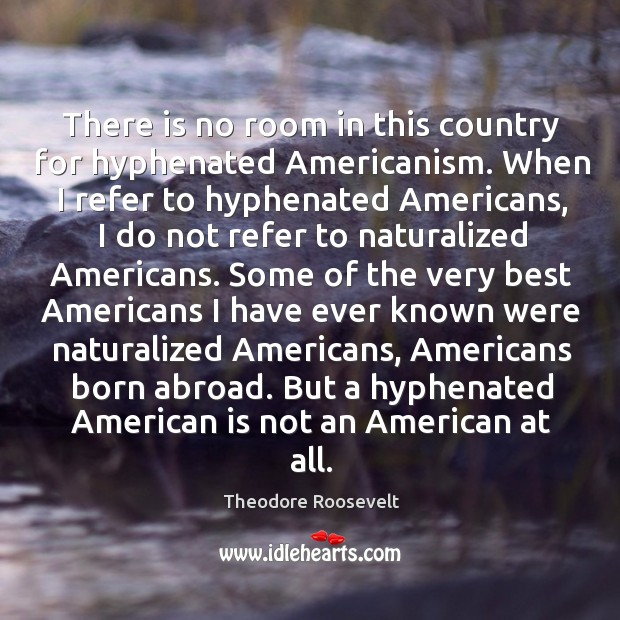 Image, There is no room in this country for hyphenated Americanism. When I