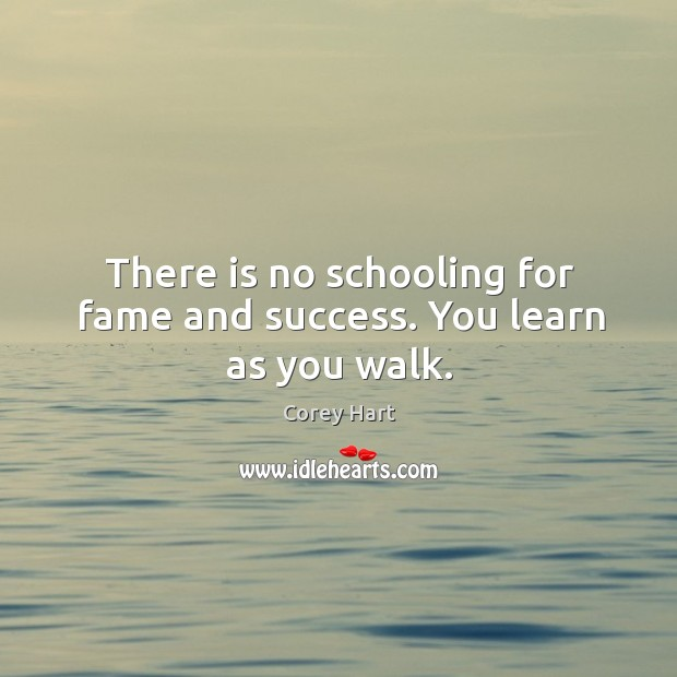 There is no schooling for fame and success. You learn as you walk. Image