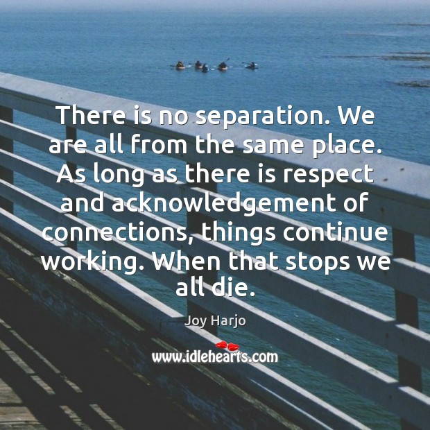 There is no separation. We are all from the same place. As Joy Harjo Picture Quote