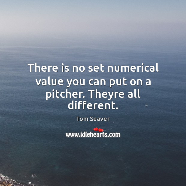 There is no set numerical value you can put on a pitcher. Theyre all different. Tom Seaver Picture Quote