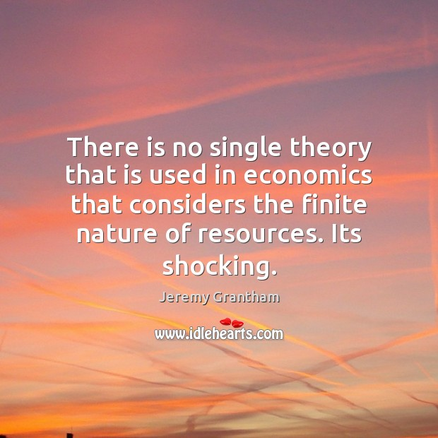 There is no single theory that is used in economics that considers Jeremy Grantham Picture Quote
