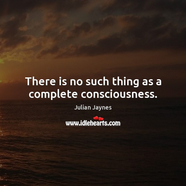 There is no such thing as a complete consciousness. Image
