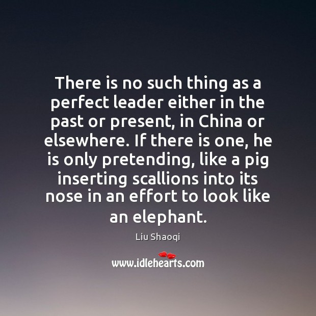 There is no such thing as a perfect leader either in the Image