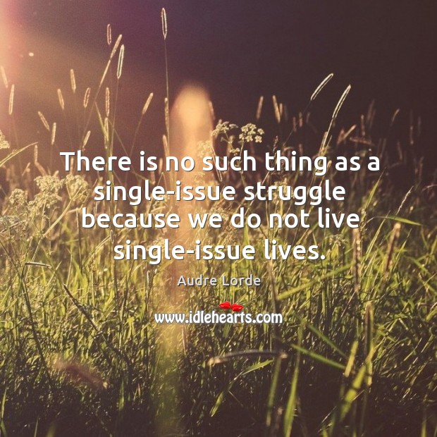 There is no such thing as a single-issue struggle because we do not live single-issue lives. Audre Lorde Picture Quote