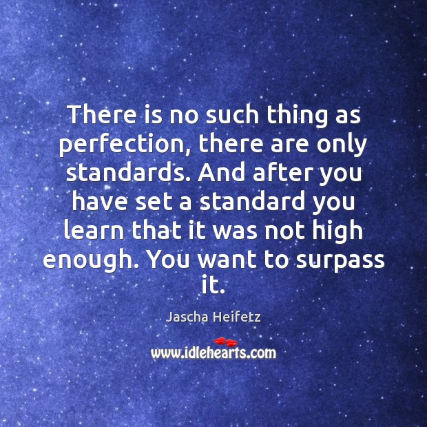 Image, There is no such thing as perfection, there are only standards. And
