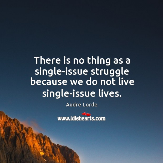 There is no thing as a single-issue struggle because we do not live single-issue lives. Audre Lorde Picture Quote
