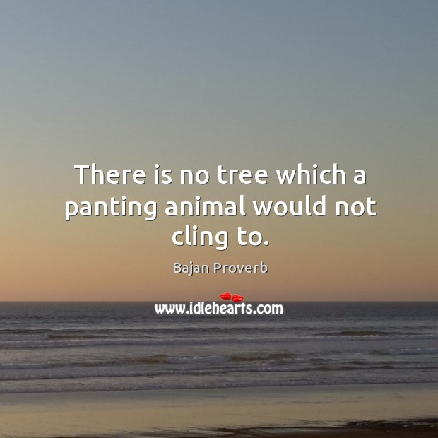 There is no tree which a panting animal would not cling to. Bajan Proverbs Image