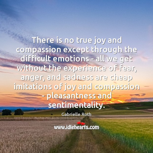 There is no true joy and compassion except through the difficult emotions True Joy Quotes Image