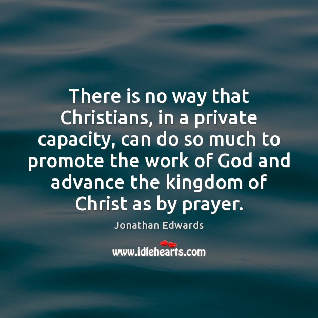 There is no way that Christians, in a private capacity, can do Jonathan Edwards Picture Quote