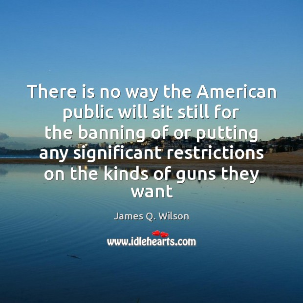 Image, There is no way the American public will sit still for the