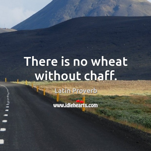Image, There is no wheat without chaff.