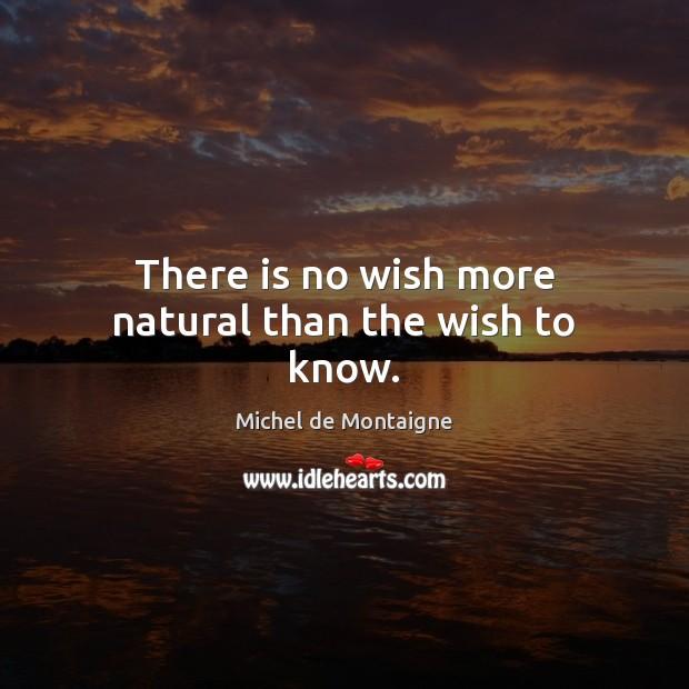 michel de montaigne and nature
