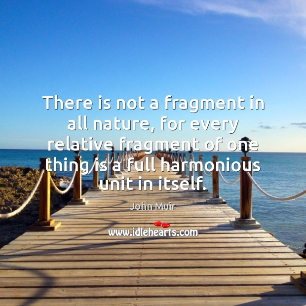 There is not a fragment in all nature, for every relative fragment Image