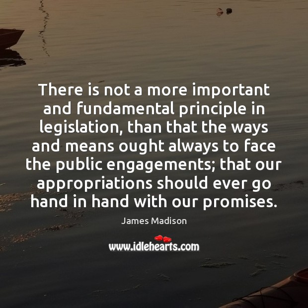 There is not a more important and fundamental principle in legislation, than James Madison Picture Quote