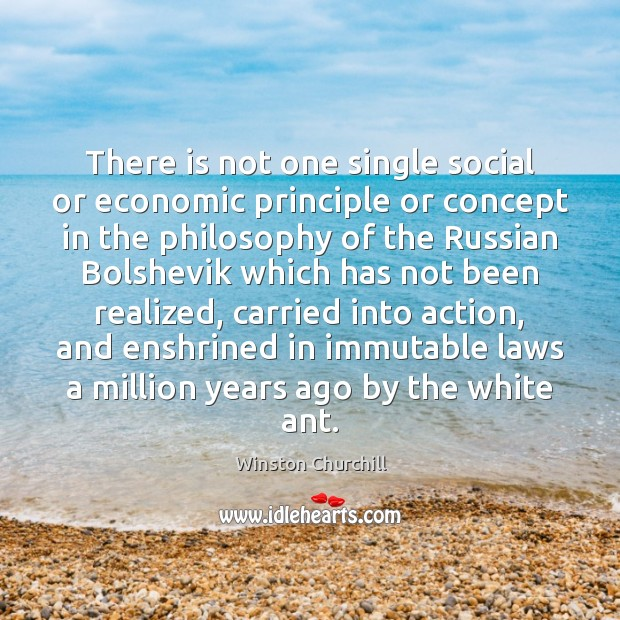 There is not one single social or economic principle or concept in Winston Churchill Picture Quote
