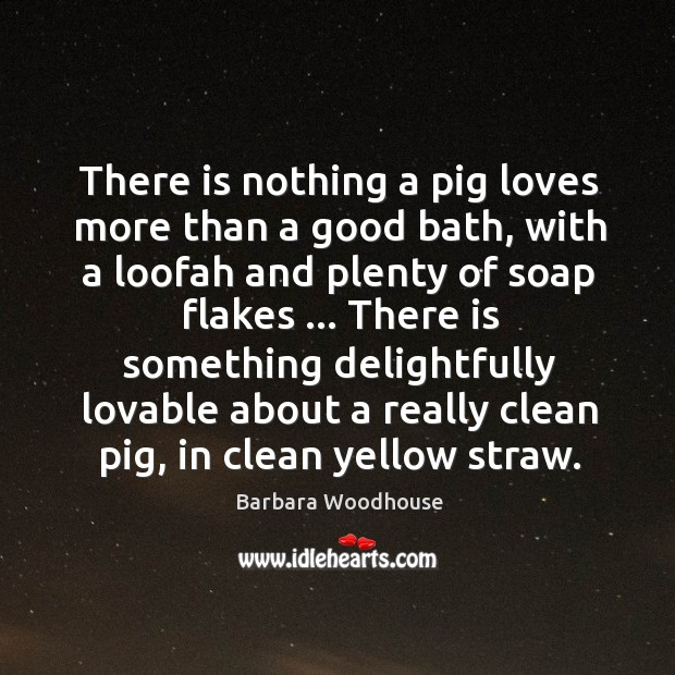 There is nothing a pig loves more than a good bath, with Image