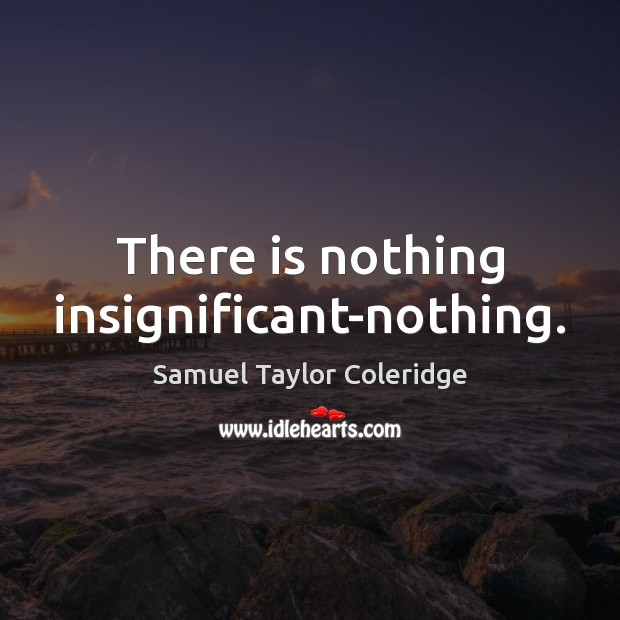 There is nothing insignificant-nothing. Image