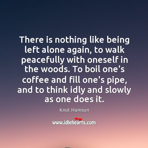 There is nothing like being left alone again, to walk peacefully with Image