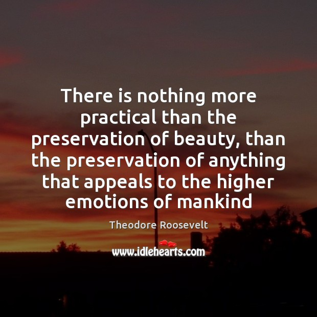 Image, There is nothing more practical than the preservation of beauty, than the