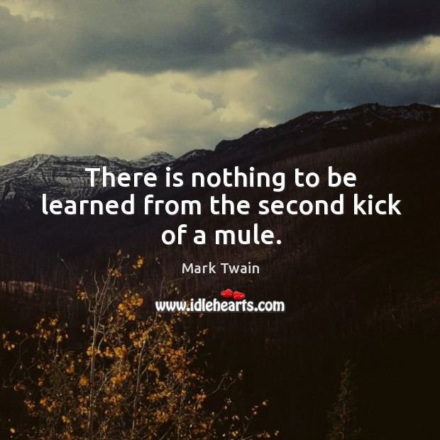 There is nothing to be learned from the second kick of a mule. Image