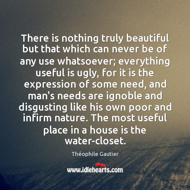 There is nothing truly beautiful but that which can never be of Image