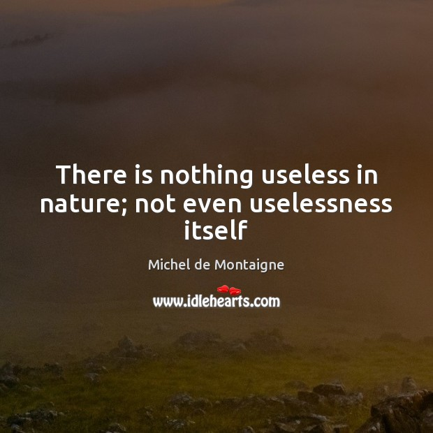 michel de montaigne and nature A collection of sayings and quotes by michel de montaigne on friendship, philosophy, essays, books, education, fear, wisdom love and death.