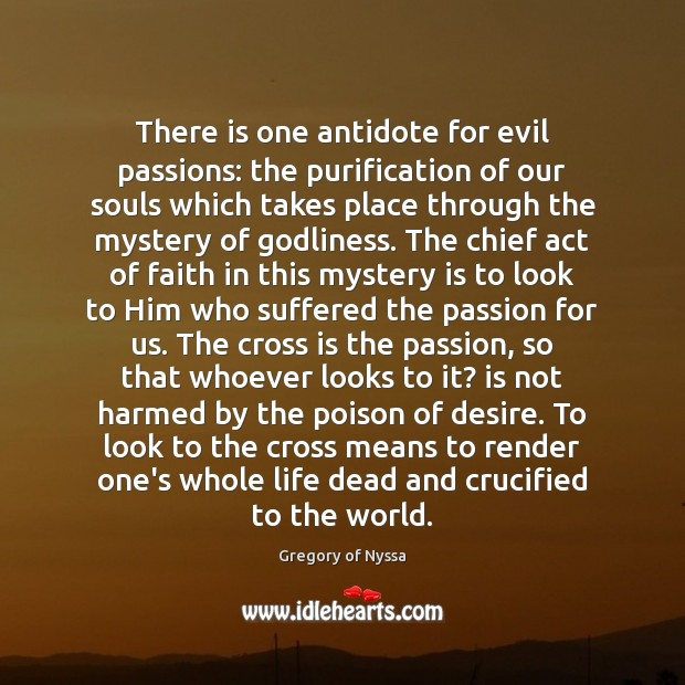 There is one antidote for evil passions: the purification of our souls Image