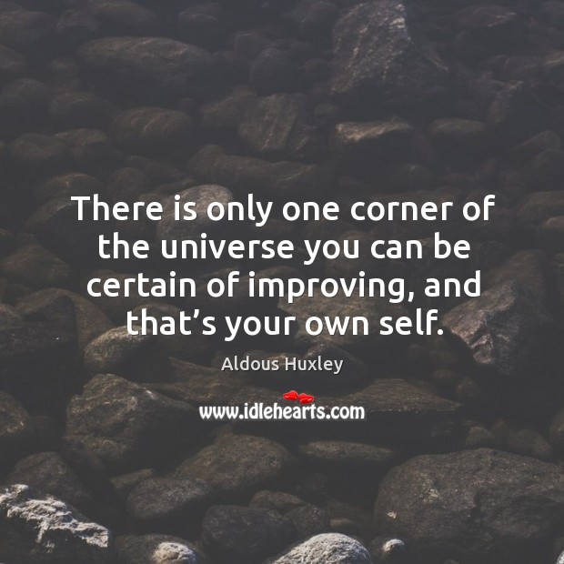 Image about There is only one corner of the universe you can be certain of improving, and that's your own self.