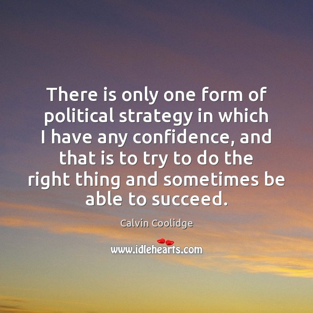 There is only one form of political strategy in which I have Image
