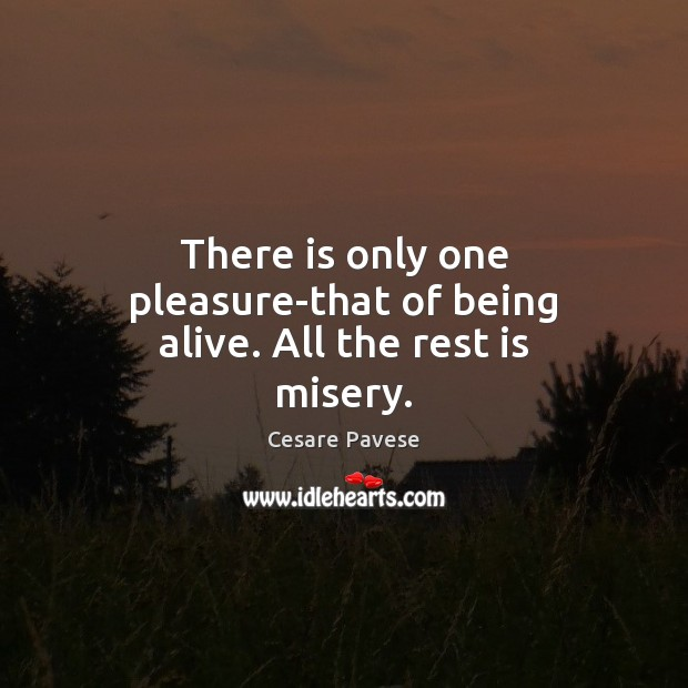 There is only one pleasure-that of being alive. All the rest is misery. Cesare Pavese Picture Quote