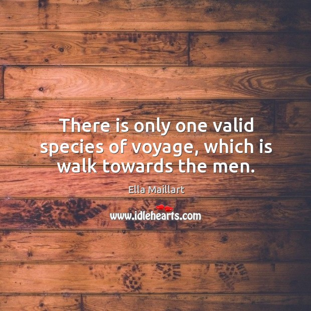 Image, There is only one valid species of voyage, which is walk towards the men.