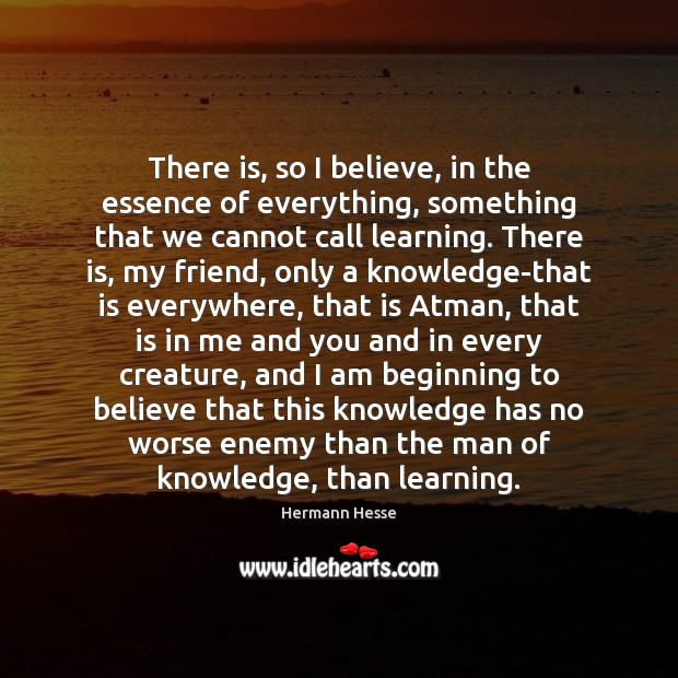 There is, so I believe, in the essence of everything, something that Hermann Hesse Picture Quote