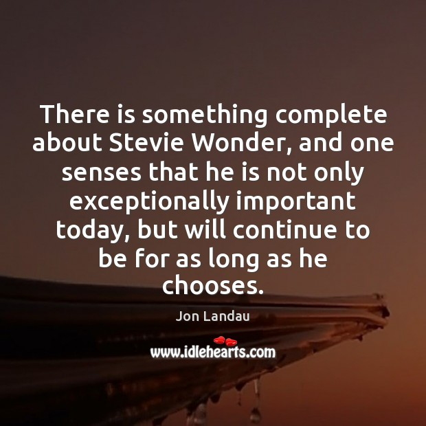 Image, There is something complete about Stevie Wonder, and one senses that he