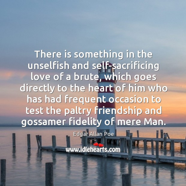 There is something in the unselfish and self-sacrificing love of a brute, which goes directly Image