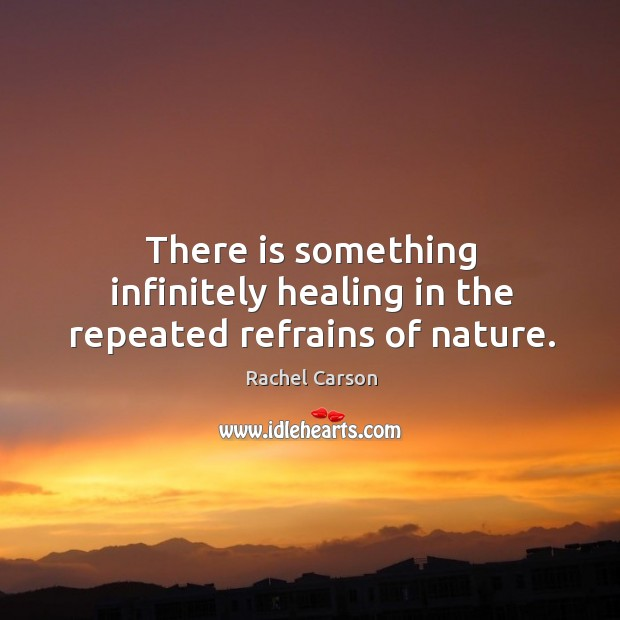 Image, There is something infinitely healing in the repeated refrains of nature.
