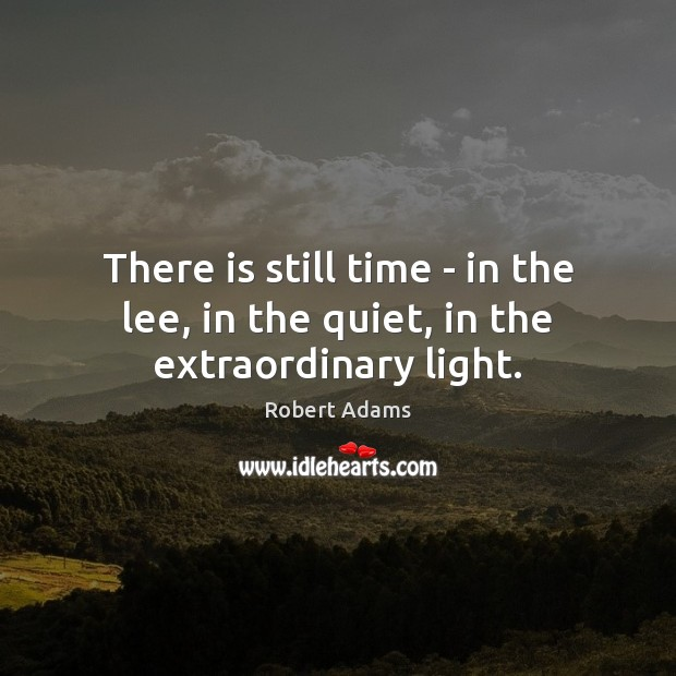 There is still time – in the lee, in the quiet, in the extraordinary light. Robert Adams Picture Quote