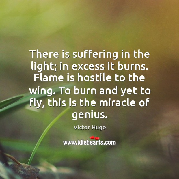 There is suffering in the light; in excess it burns. Flame is Image