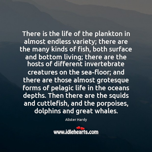 Image, There is the life of the plankton in almost endless variety; there