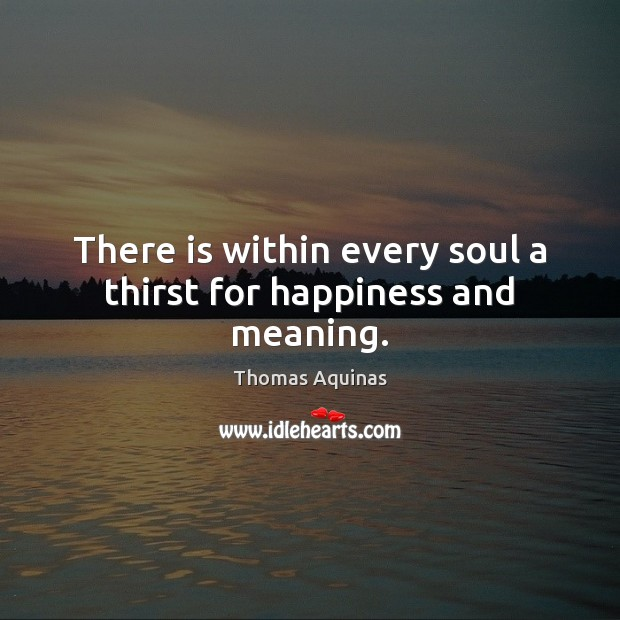 There is within every soul a thirst for happiness and meaning. Image